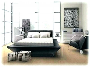 Gorgeous Modern Black Bed