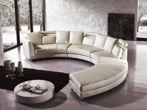 Curved Leather Sectional Sofa in Delhi
