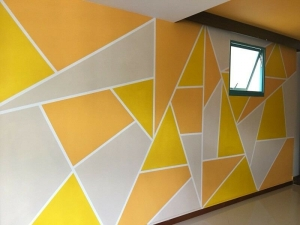 Cheap and best house painting Manufacturers in Delhi